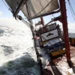 Noch Plätze frei beim Segeltörn zum Colgate Windsurf Worldcup nach Sylt