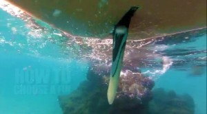 sup finnen tutorial superflavor