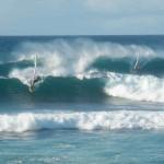 Jenny Surft – Riesen-Schildkröten, Tsunami-Warnungen, Windsurfentzug