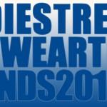 Die Streetwear Trends 2013