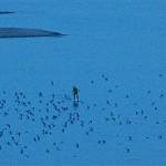 Kölner paddelt 1200km mit dem SUP Board – Weltrekord in 9 Tagen