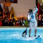 boot Düsseldorf sponsert auch 2014 die wichtigsten Wettkampfserien Deutschlands
