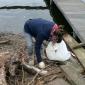 superflavor beach cleanup 2011