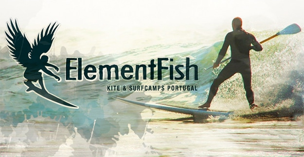 elementfish surf camp