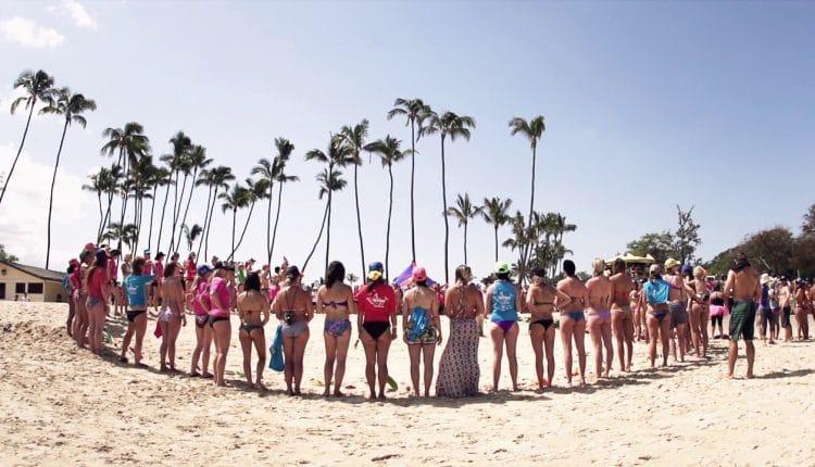 Butterfly Effect Maui 2013