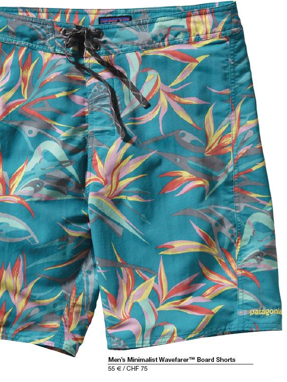 patagonia shorts 2014