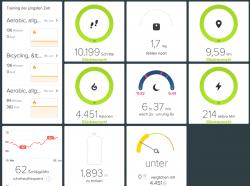 fitbit surge test review superflavor sup 09 250x186 - Fitbit Surge – die smarte Fitness Uhr im Superflavor Test