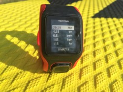 tomtom multi sport cardio test review superflavor sup 02 250x188 - TomTom Multi-Sport Cardio im Superflavor Test